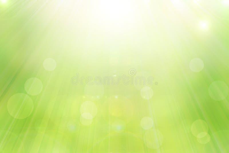 De aard groene lente met zonlicht bokeh achtergrond en houten plank royalty-vrije stock foto
