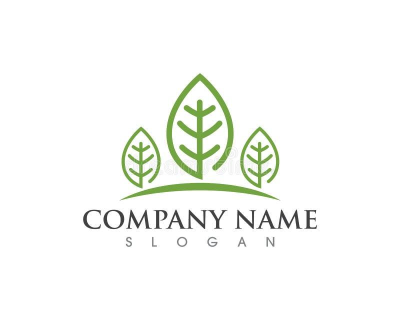 De aard Logo Template van de bladecologie stock illustratie