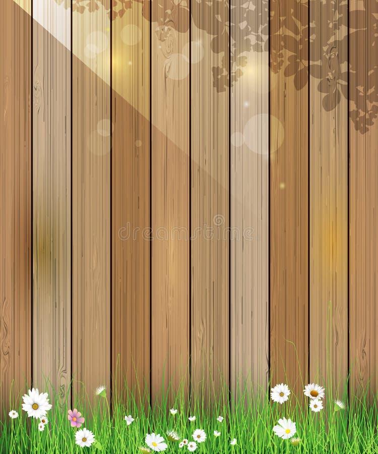 De aardachtergrond van de lente Groene gras en bladinstallatie, Witte Gerbera, Daisy bloemen en zonlicht over houten omheining vector illustratie