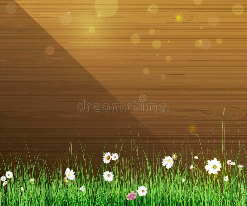 De aardachtergrond van de lente Groene gras en bladinstallatie, Witte Gerbera, Daisy bloemen en zonlicht over houten omheining royalty-vrije illustratie