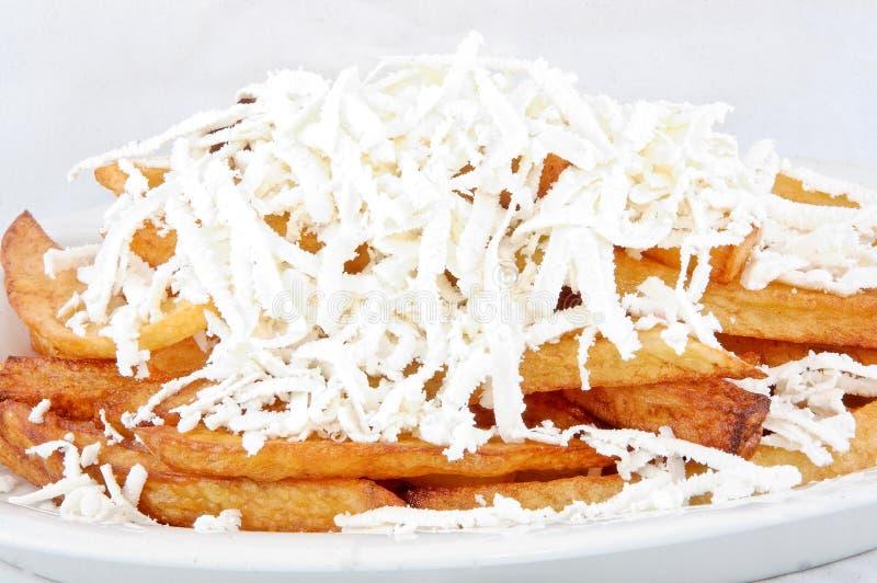 De aardappel van het gebraden gerecht met kaas royalty-vrije stock afbeeldingen