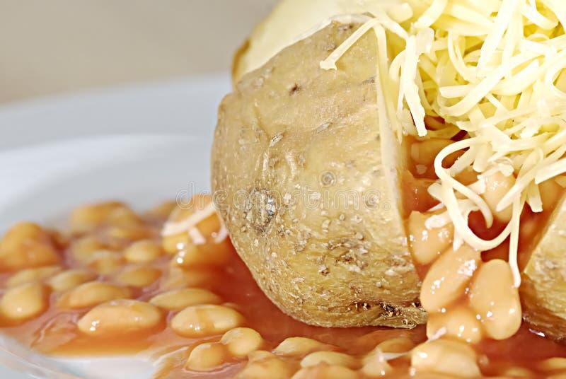 De aardappel van het jasje stock afbeeldingen