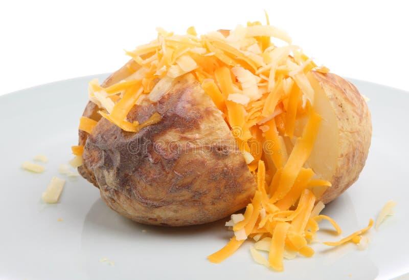 De Aardappel van het jasje met Kaas royalty-vrije stock foto's