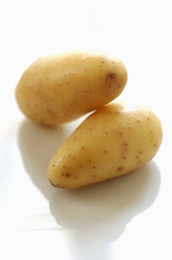 De aardappels van Ratte royalty-vrije stock foto's