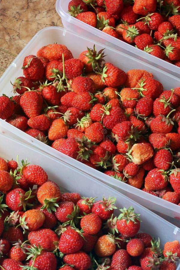 De aardbeien sluiten omhoog Achtergrond stock foto's