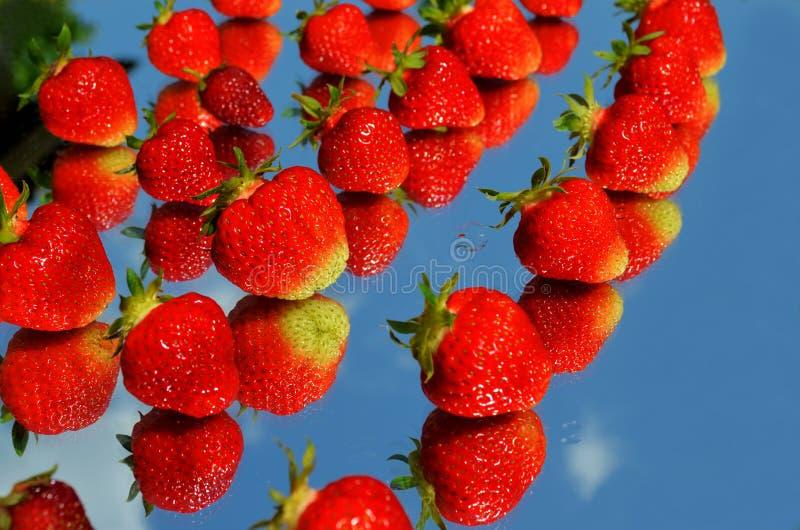 De aardbeien worden weerspiegeld in de spiegel tegen de achtergrond van wolken in de hemel royalty-vrije stock afbeeldingen