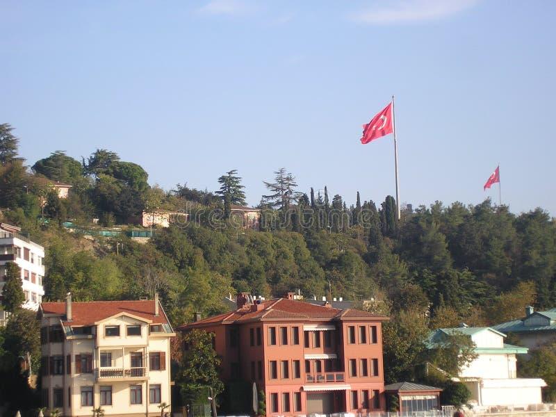 De aardige grote beelden van Turkije royalty-vrije stock afbeelding