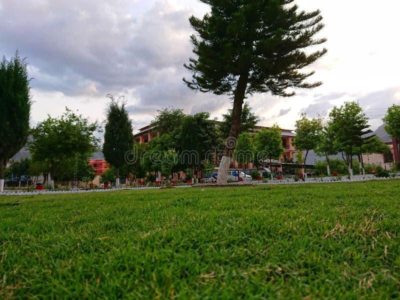 De aardinstallaties tuinieren groen stock afbeelding