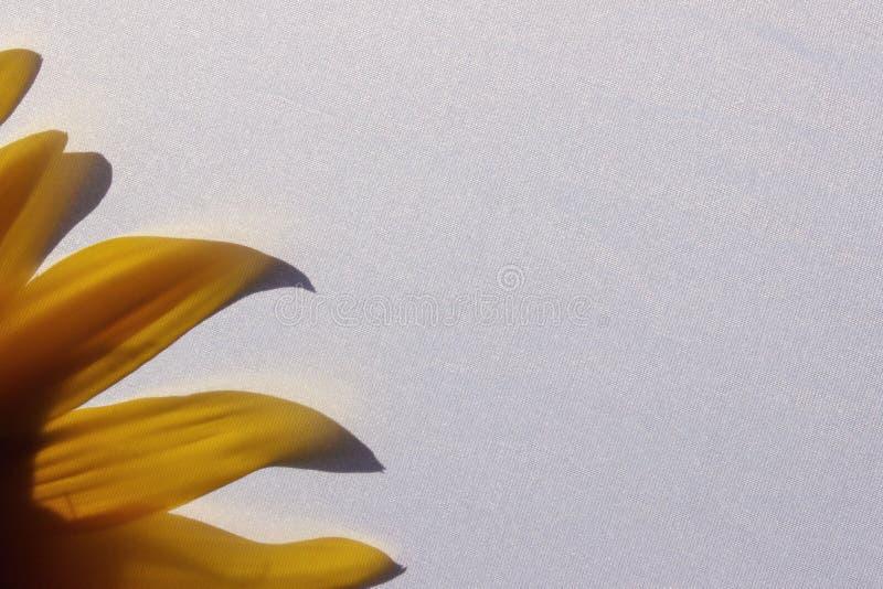 De abstracte Achtergrond van de Aard Bebouwd schot van Zonnebloem Gevoelig bloemenpatroon met lichtgele zonnebloem achter textiel stock fotografie