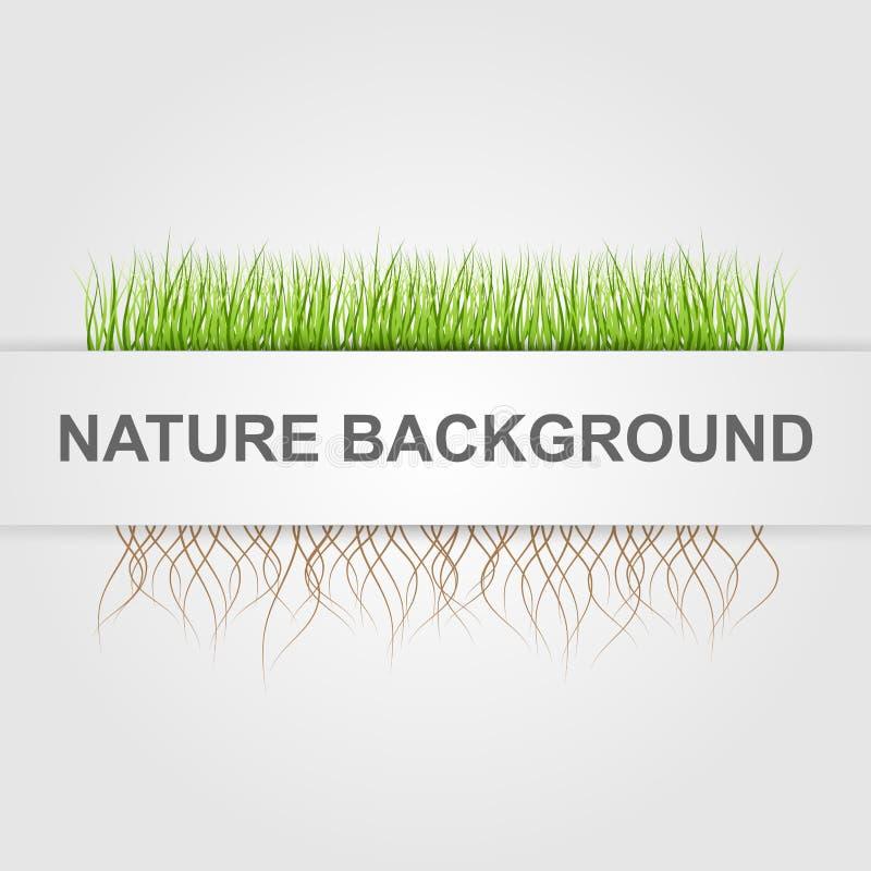 De abstracte Achtergrond van de Aard Groen gras stock illustratie