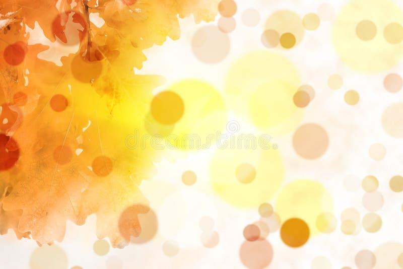 De abstracte achtergrond van de herfst royalty-vrije stock afbeelding