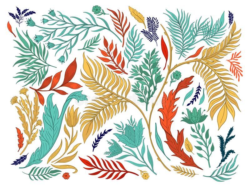 De abstracte getrokken hand van de aard vastgestelde inzameling Etnisch ornament, bloemendruk, textielstof, botanisch element Uit royalty-vrije illustratie