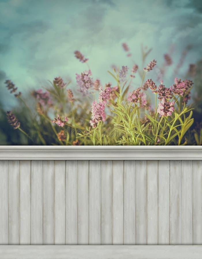 De achtergrond/de achtergrond van de de lentemuur stock afbeeldingen