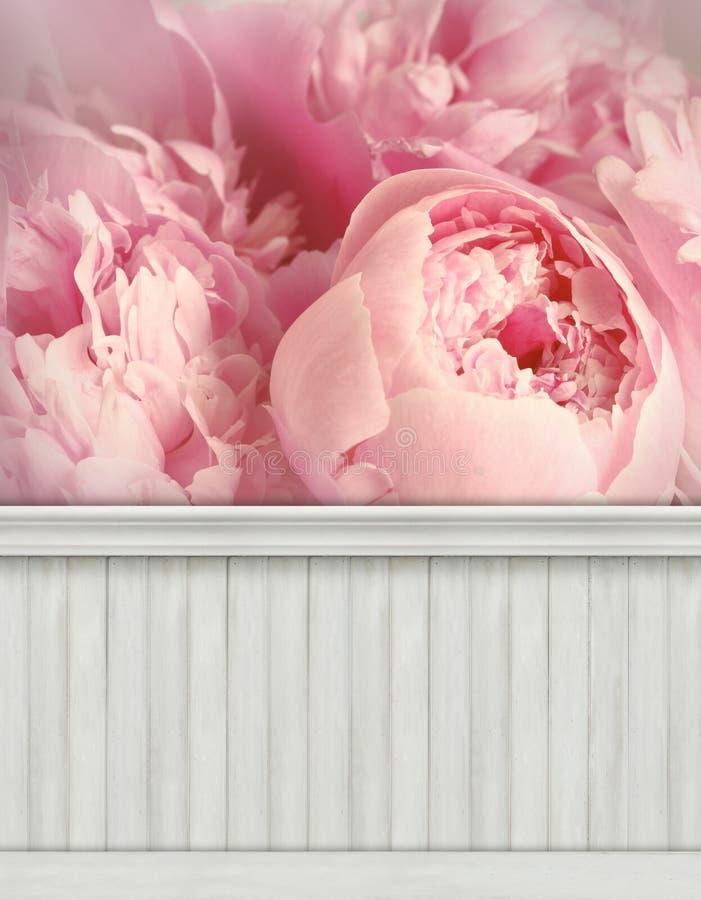 De achtergrond/de achtergrond van de de lentemuur royalty-vrije stock fotografie