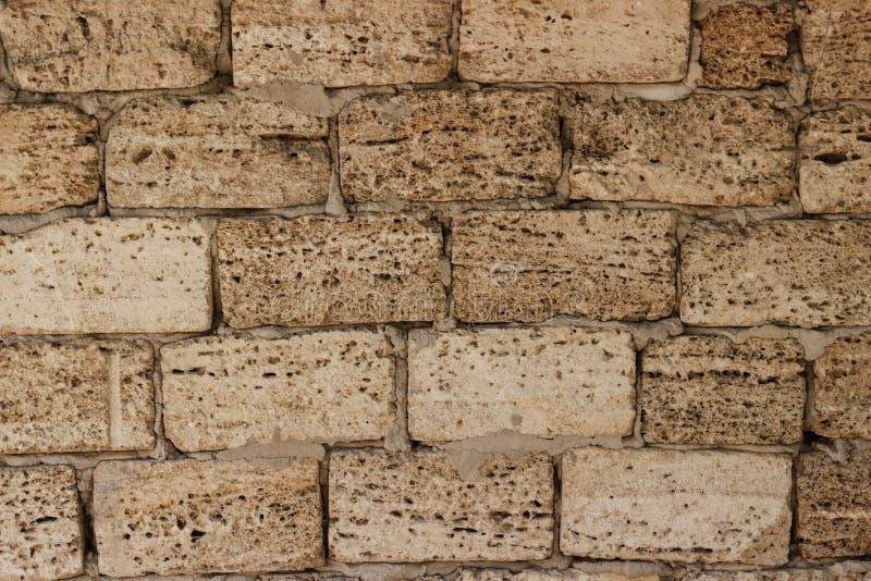 De achtergrond is een gele muur van grote bakstenen van het coquinazandsteen verzegelde shells blokken stock foto