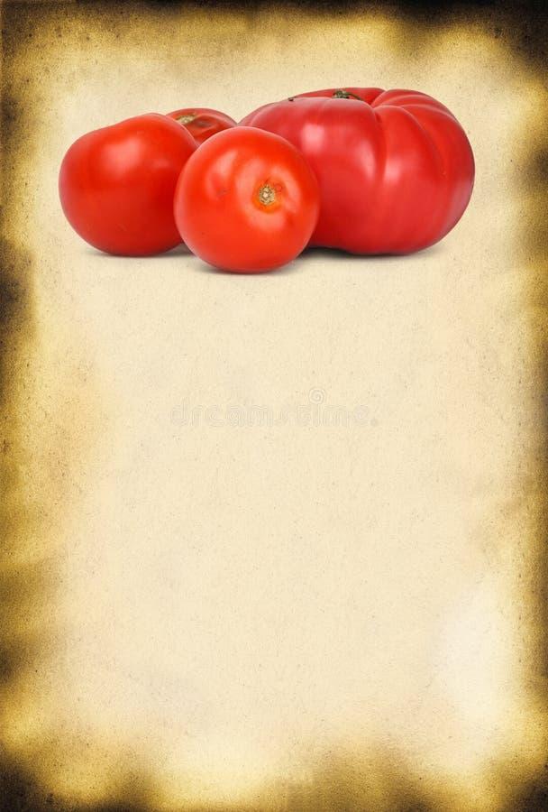 De achtergrond en de tomaten van het document stock afbeelding
