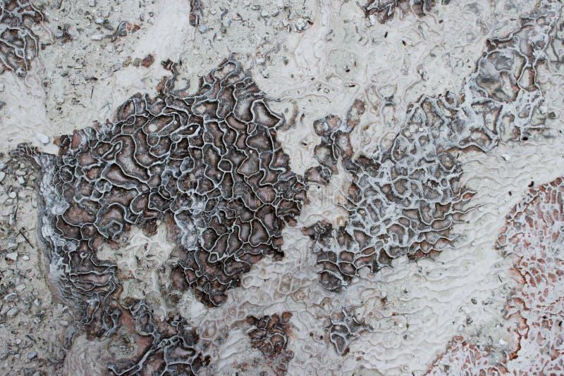 De achtergrond en de textuur van de carbonaat minerale linkerzijde door het stromende water bij het katoenen kasteel, Pamukkale stock afbeelding