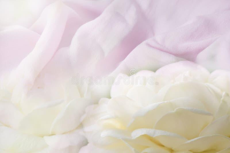 De achtergrond katoenen natuurlijke stof en heeft een zachte rimpeling, mengsel met zachte witte bloembloemblaadjes royalty-vrije stock foto's