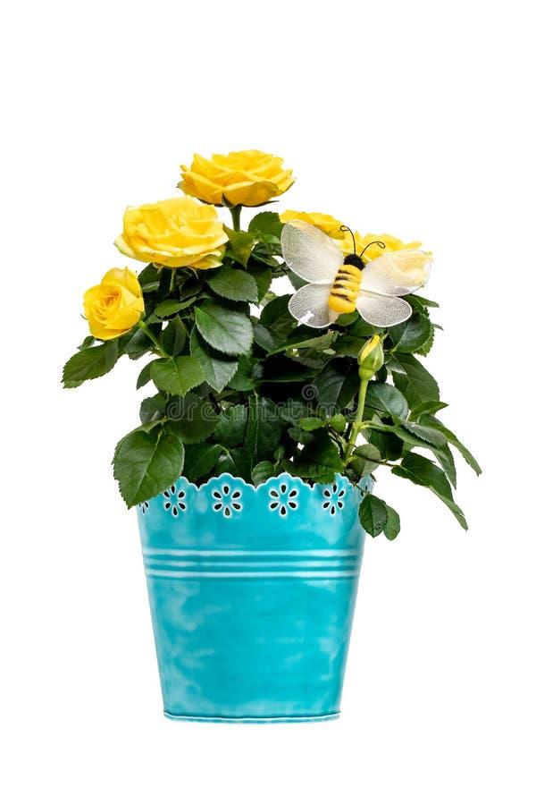 De achtergrond van de bloemdecoratie Close-up van mooi boeket van gele rozen in een decoratieve blauwe vaas met een kunstmatig bi royalty-vrije stock foto's