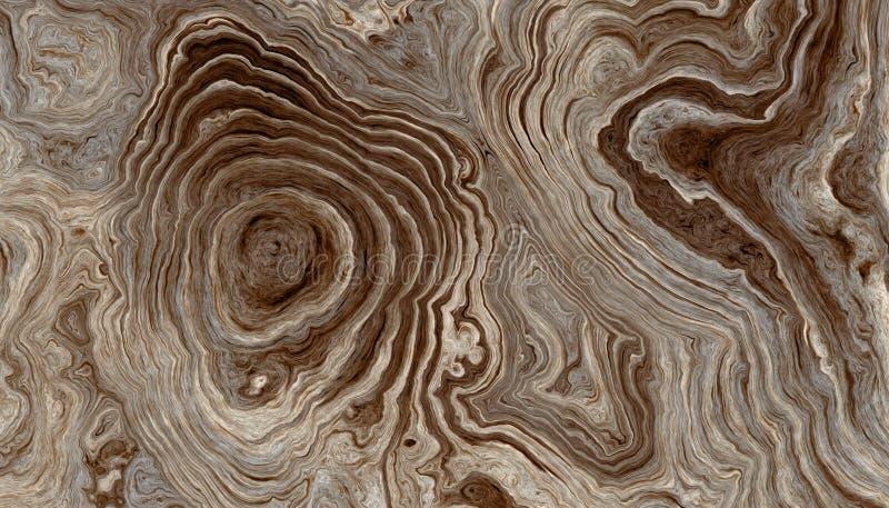 De achtergrond van boomwortels met golvende ringen royalty-vrije illustratie