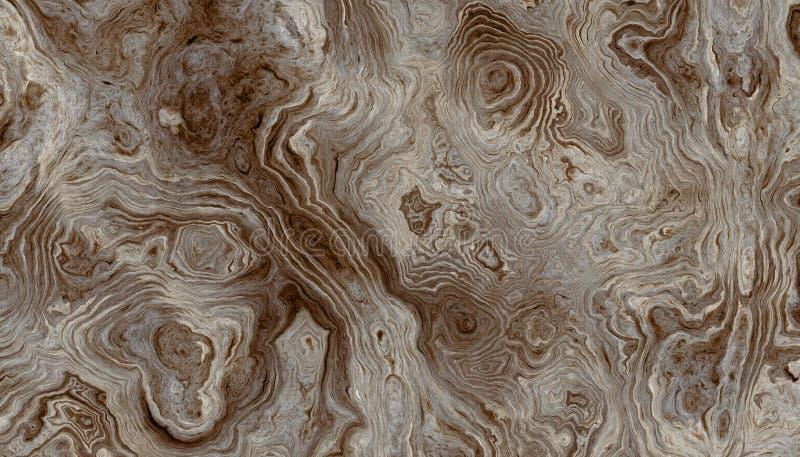 De achtergrond van boomwortels met golvende ringen vector illustratie