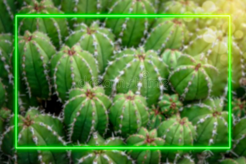 De achtergrond van de cactusinstallatie stock illustratie