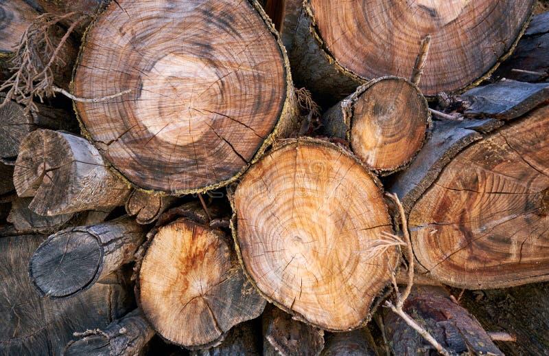 De achtergrond van cutted logboeken De natuurlijke achtergrond van de brandhoutstapel royalty-vrije stock afbeelding
