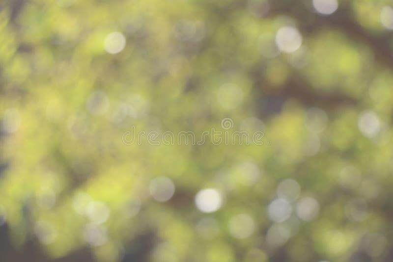Download De achtergrond van de aard stock foto. Afbeelding bestaande uit groen - 54093076