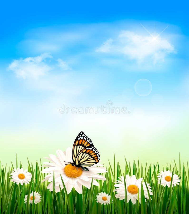 De achtergrond van de aard met groen gras en bloemenverstand vector illustratie