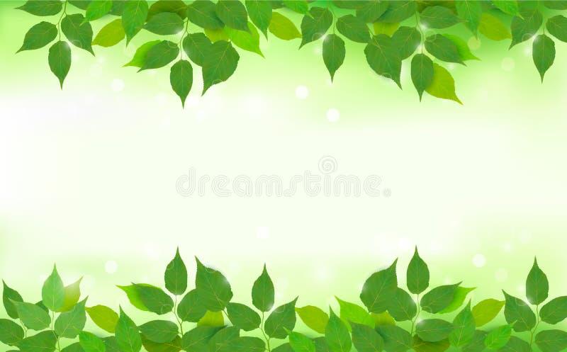 De achtergrond van de aard met groene verse bladeren royalty-vrije illustratie