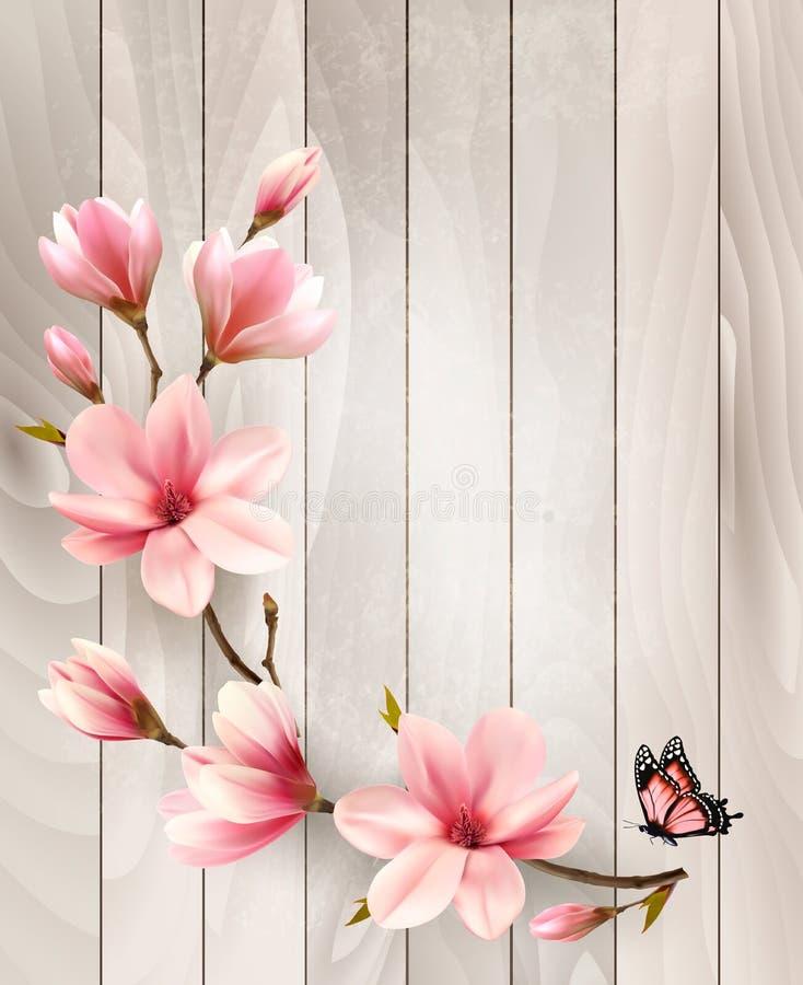 De achtergrond van de aardlente met mooie magnoliatakken vector illustratie