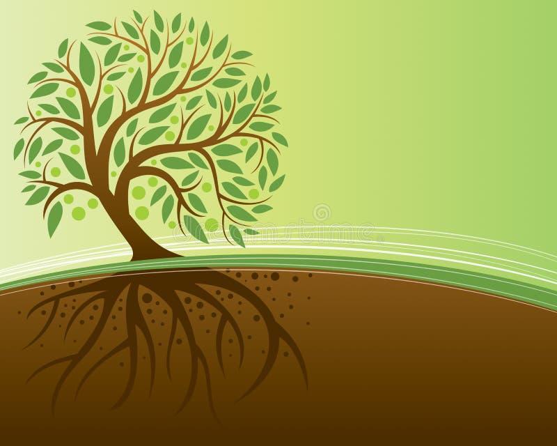 De achtergrond van de boom royalty-vrije illustratie
