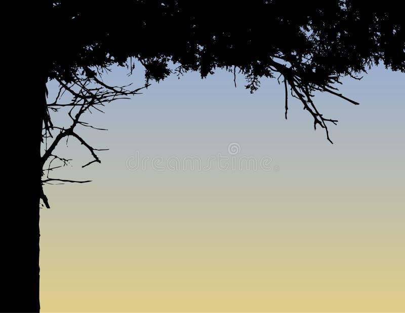 De achtergrond van de de boomgrens van de pijnboom stock illustratie