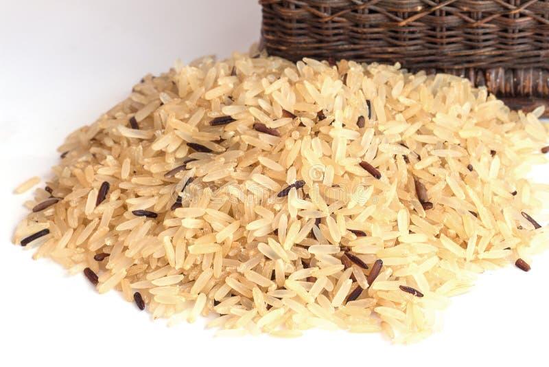 De Achtergrond van de Gabarijst, Ontkiemde ongepelde rijst, geneeskrachtige propertie royalty-vrije stock fotografie