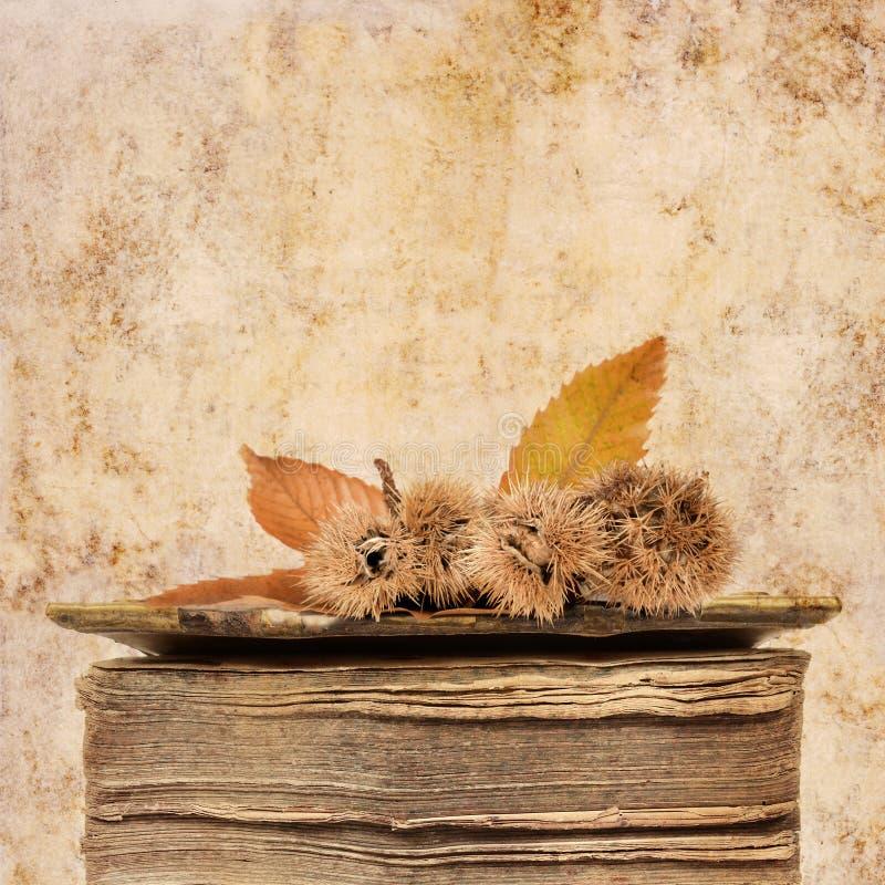 De achtergrond van de herfst met oud boek royalty-vrije stock afbeelding