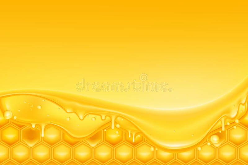 De achtergrond van de honing vector illustratie