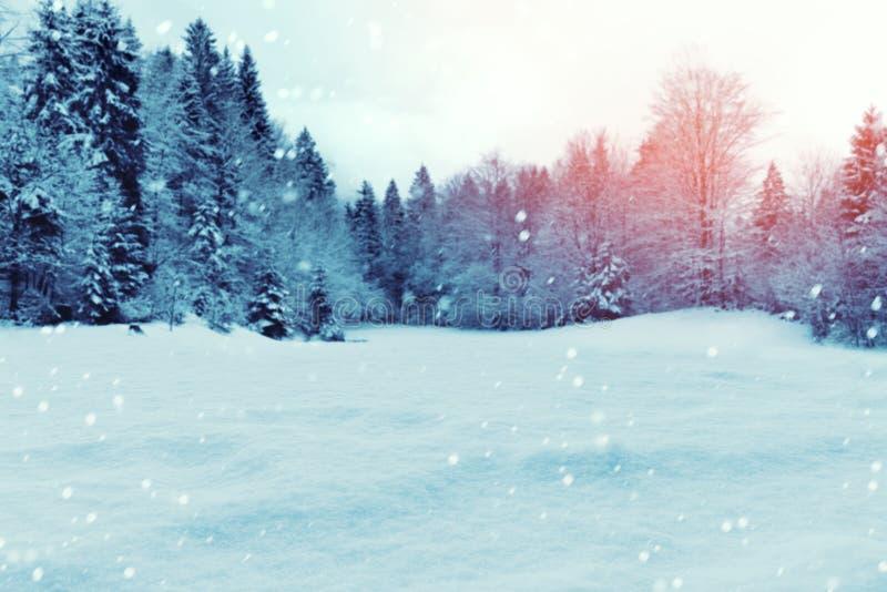 De achtergrond van de Kerstmiswinter met sneeuw en bomen stock afbeeldingen
