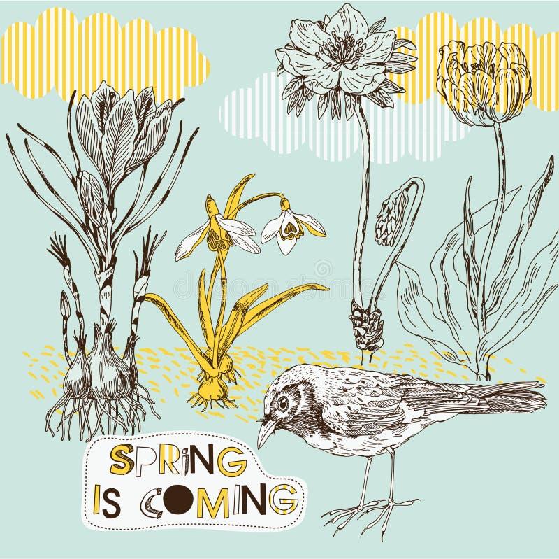 De achtergrond van de lente met bloemen en vogel vector illustratie