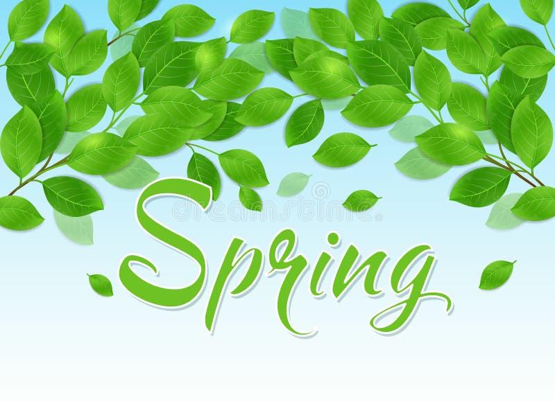 De achtergrond van de lente met groene bladeren royalty-vrije illustratie