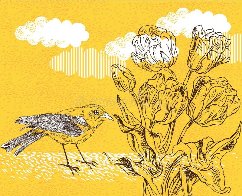 De achtergrond van de lente met tulp en vogel vector illustratie