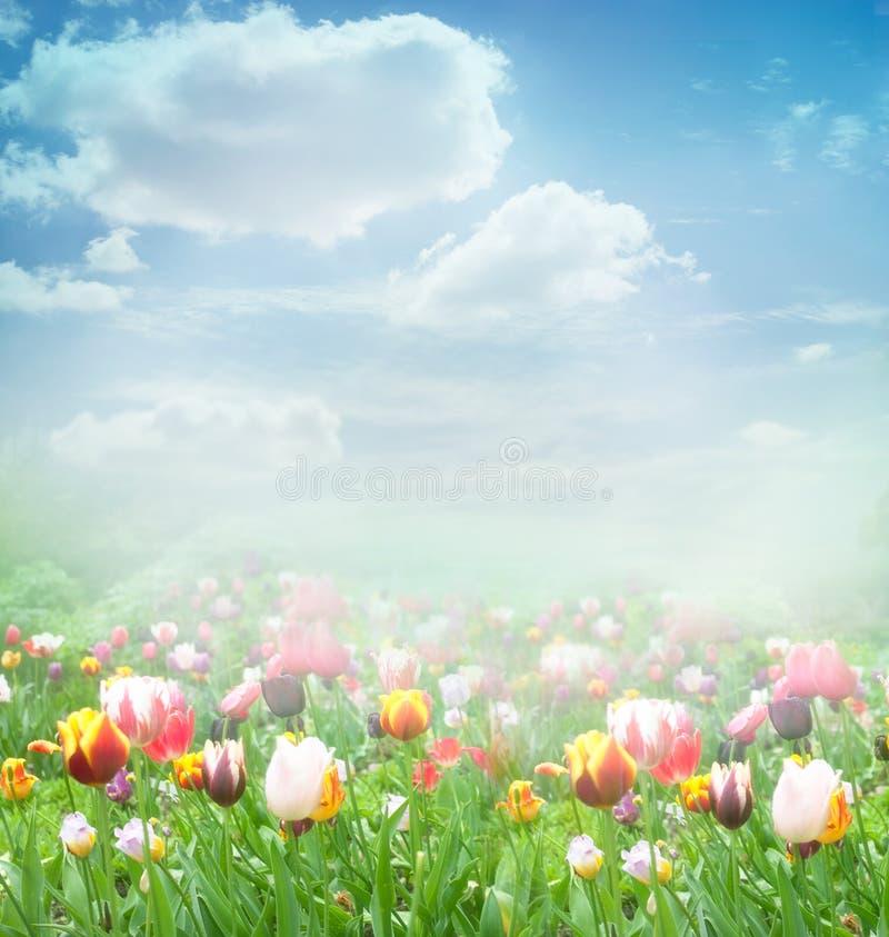 De achtergrond van de Lente van Pasen stock afbeeldingen