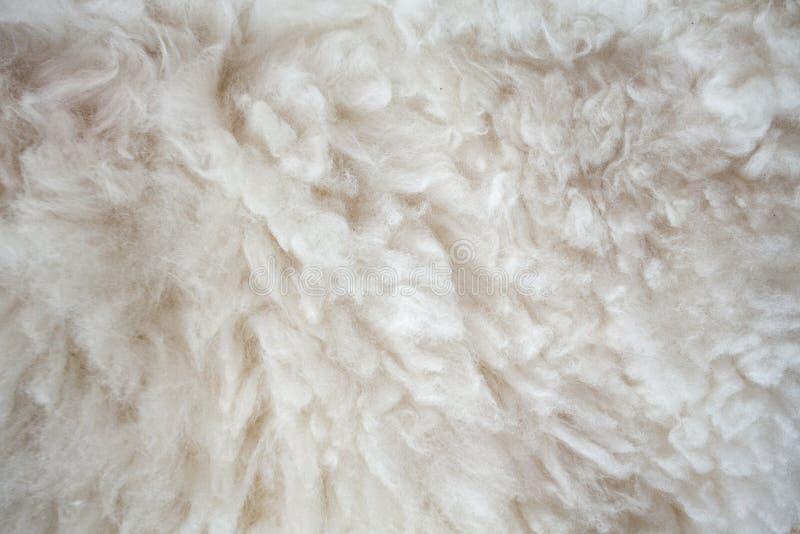 De achtergrond van de schapenwol royalty-vrije stock afbeelding