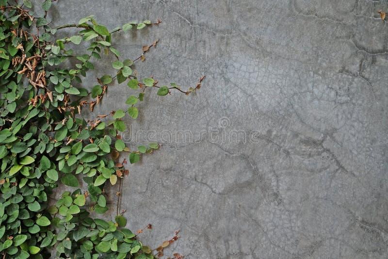 De achtergrond van de textuur stock afbeelding