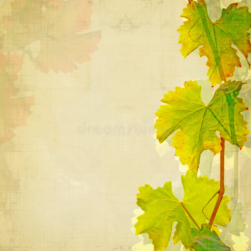 De achtergrond van de wijn stock illustratie
