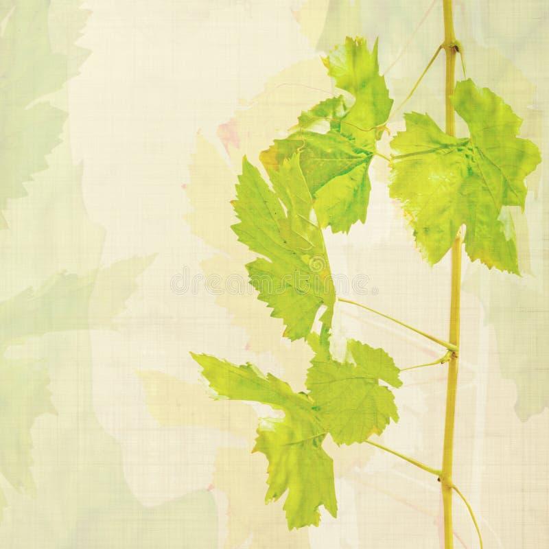 De achtergrond van de wijn royalty-vrije illustratie
