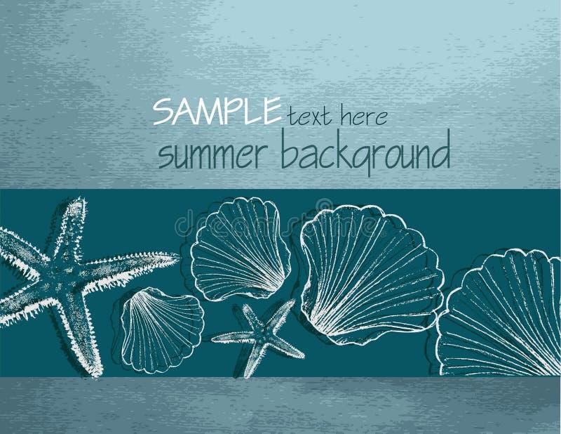 De achtergrond van de zomer met shells vector illustratie