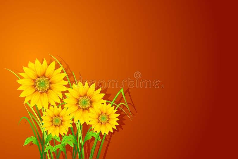 De Achtergrond van de zonnebloem vector illustratie