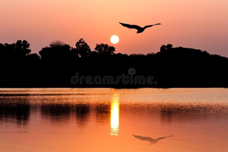 De achtergrond van de zonsondergang stock afbeelding