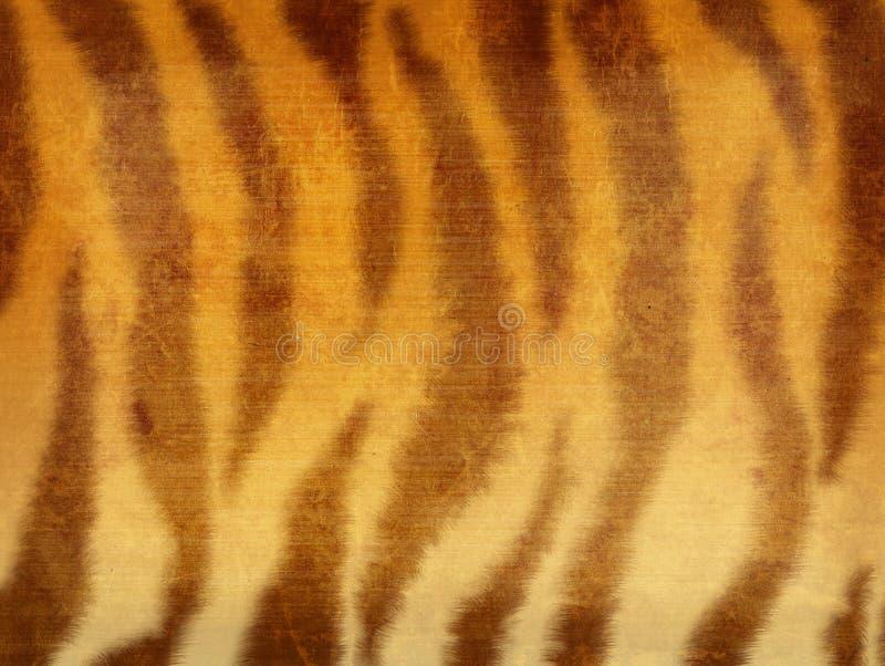 De achtergrond van Grunge - bont van een tijger stock foto