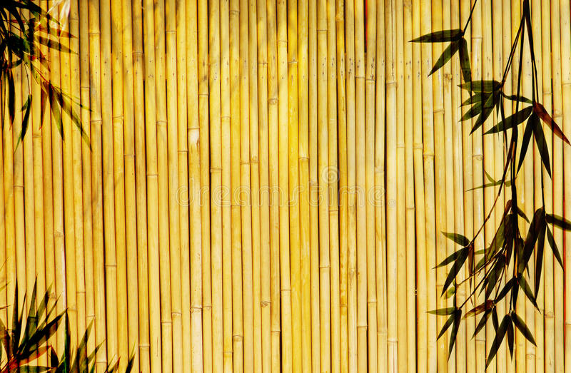 De Achtergrond van het bamboe stock foto